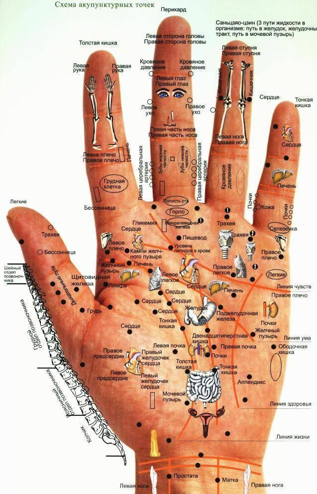 Энергетические точки на руках