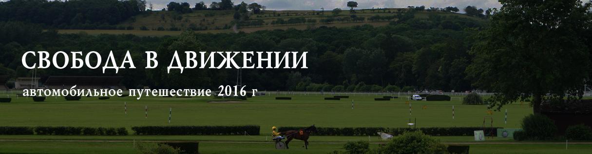 vitel-2016