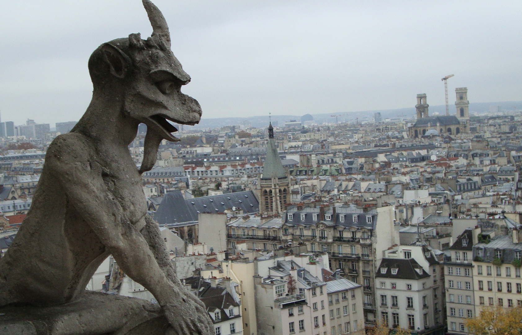 chimera_of_notre_dame_de_paris