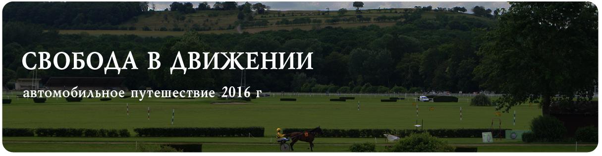 vitel-2016-kopiya